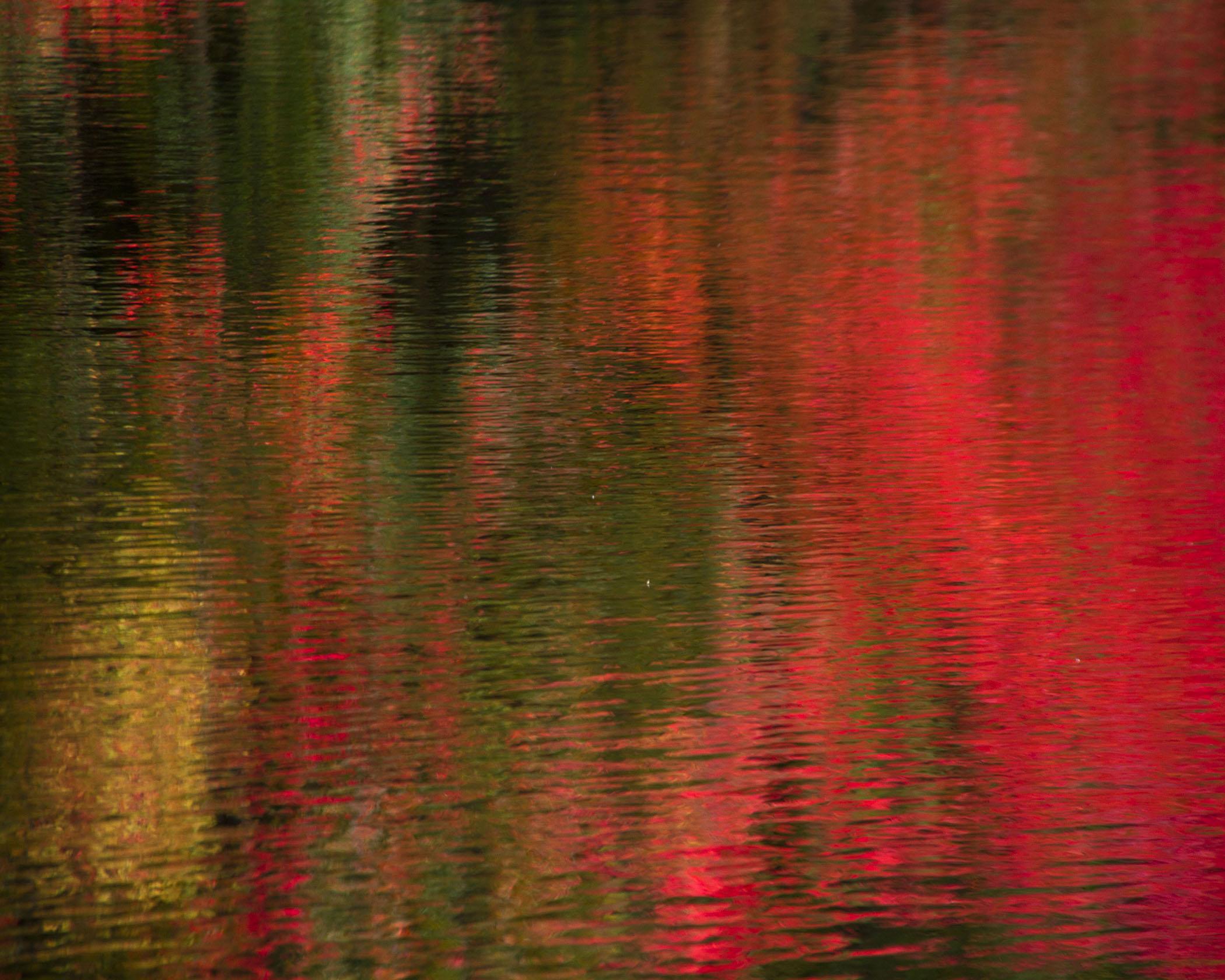Cheryl Philopena HM Landscapes